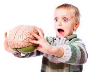 کارکردهای مغزی کودک و تقویت آنها (یک تا سه سالگی)