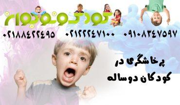کودک دو ساله ی پرخاشگر را بیشتر بشناسید.