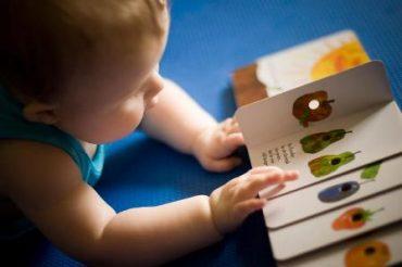 رشد مغز کودک، دو تا دو و نیم سالگی