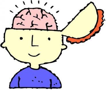 رشد مغز کودک، ۱۹ ماهگی تا ۲۱ ماهگی