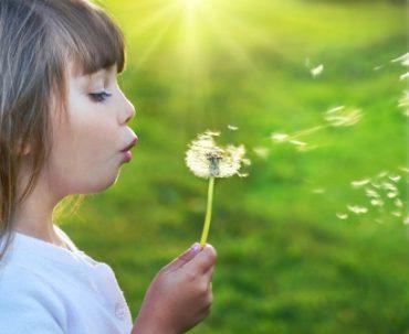 یک بازی شاد: آرزوهای جادویی