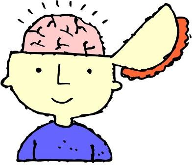 رشد مغز کودک، 19 ماهگی تا 21 ماهگی