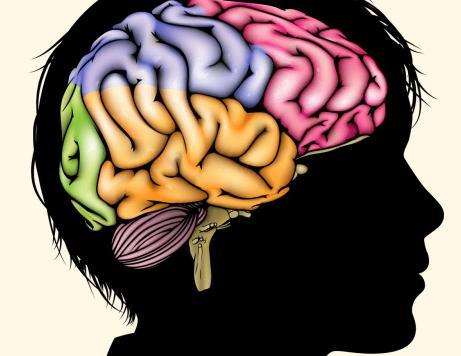 تاثیر منفی مشکلات خانوادگی بر رشد مغز کودک